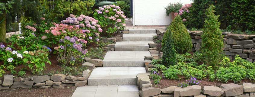 Gartengestaltung mit pfiff garten und landschaftsbau for Gartengestaltung mit buchs und hortensien